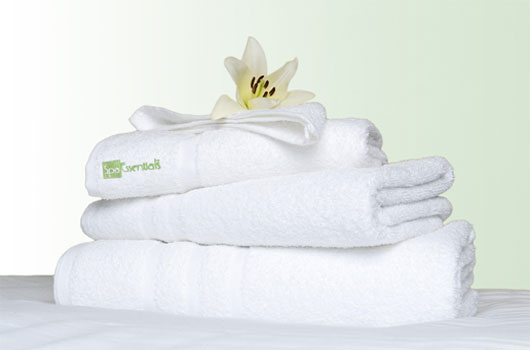 spa essentials branded towels